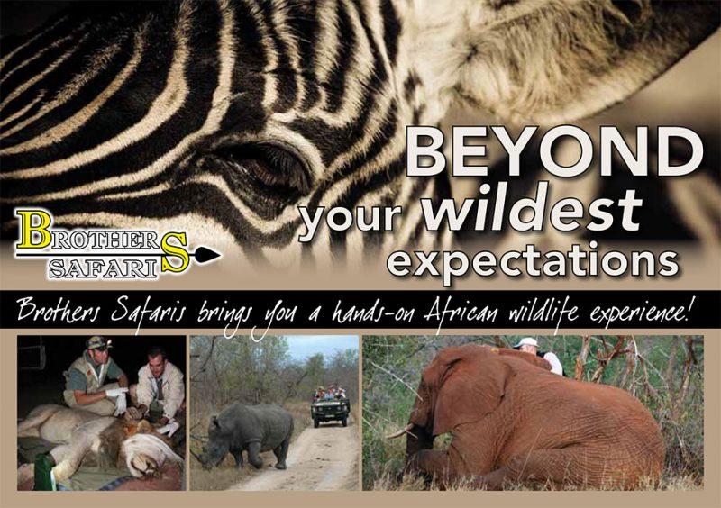 Brochures | Vet Safaris | Safari Tours | South African Tours